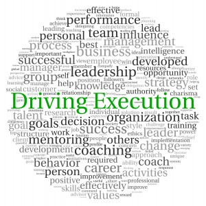 Driving Strategic Execution requires a well thought through process and accountability for every stakeholder in the business.