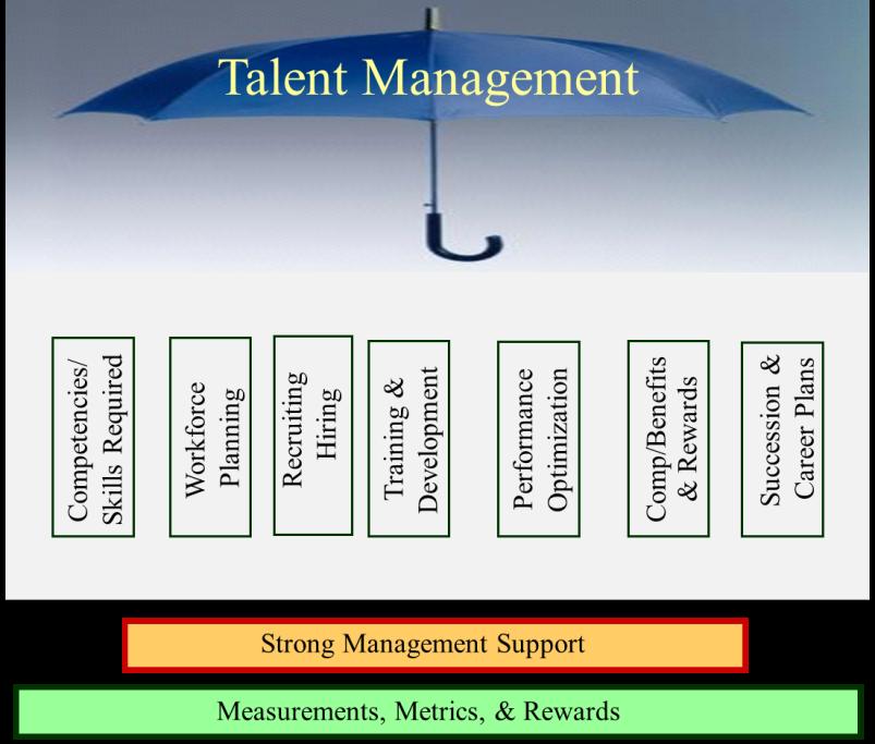 Analysis of company s strategies 1