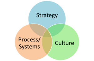 strategy.process.cultre