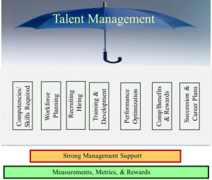 Talent Management Self Assessment