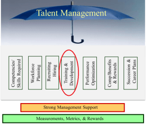 Talent Management Training and Development