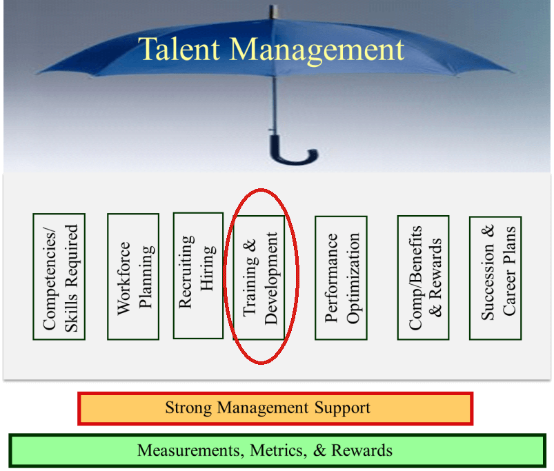 talent development Human resource management regards training and development as a function concerned with organizational activity aimed at bettering the job performance of individuals and groups in organizational settings.