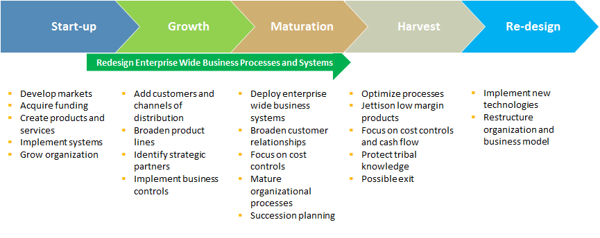 Business Life Cycles and Information Technology
